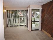 1 Bedroom LOFT w/ 3 balconies and VIEW