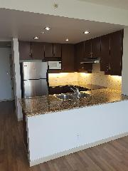2 Bedroom Condo w/ VIEW in Burnaby Mountain