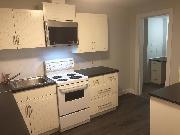 2 Bedroom Basement Suite in Dunbar/Southlands, Vancouver